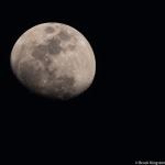 Feb_moon3